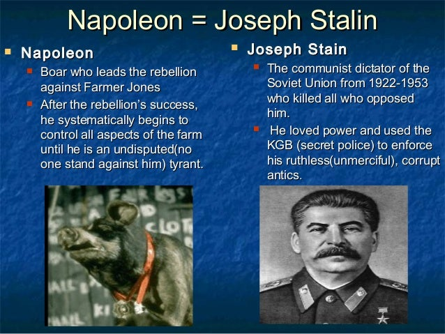 Animal Farm Stalin And Napoleon Custom Paper Example 2538 Words