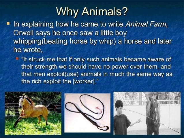 Essays on service animal farm character