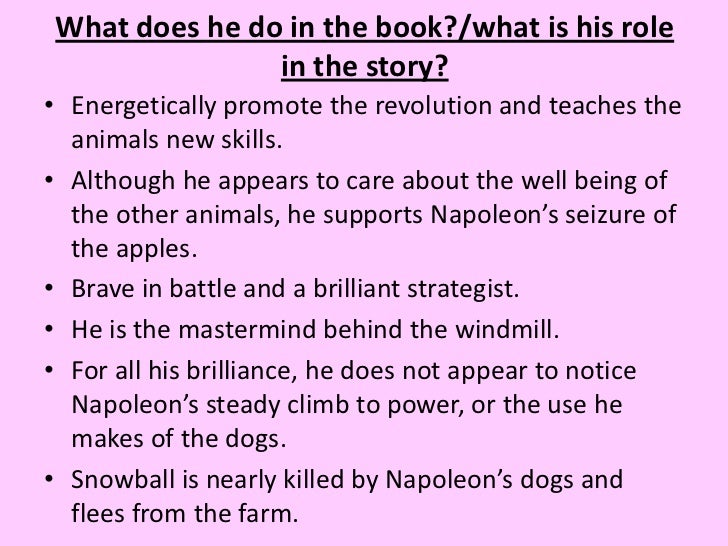 napolean essay Napoleon bonaparte essays napoleon bonaparte (1769-1821 ce) was born during the time of the french revolution, which ultimately affected his goals and eventual leadership of france.