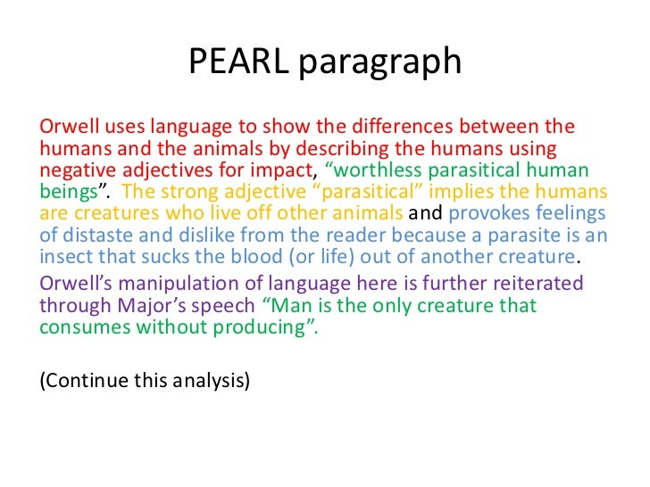 paragraph writing meaning