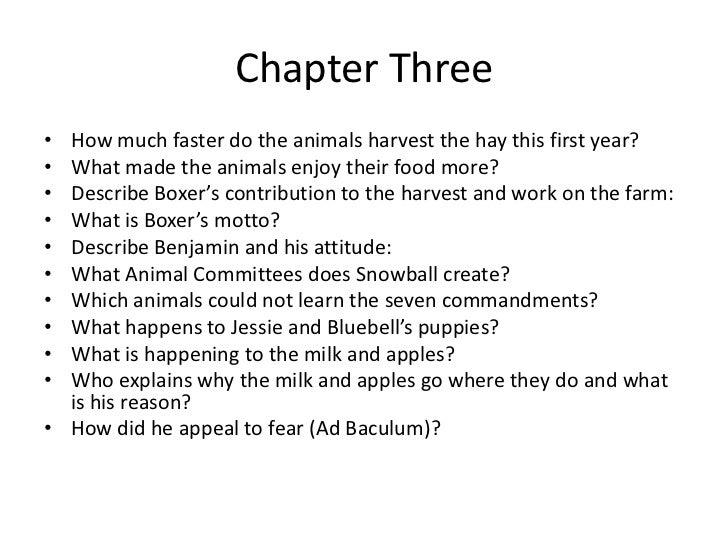 Animal Farm Essay Topics Vatozozdevelopment