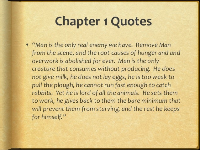 Animal Farm Quotes Custom Animal Farm Chapter Quotes