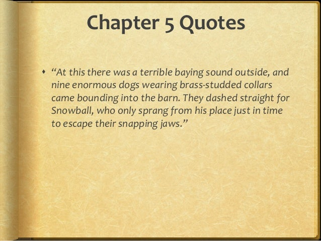 Animal Farm Quotes Extraordinary Animal Farm Chapter Quotes