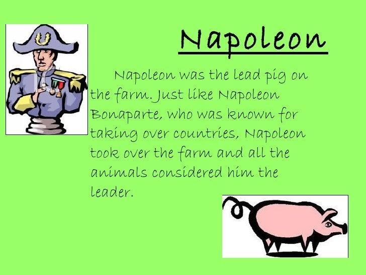Napoleon of animal farm