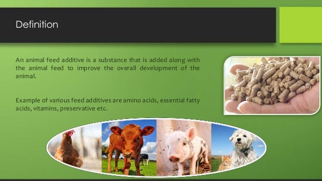 livestock feed marketing in bangladesh problems Animal feed additives market size crossed usd 165 billion in 2016 and should witness significant gains to surpass 55 million tons by 2024 says this analysis based on livestock (poultry, aquaculture, pork/swine, cattle), products (vitamins, amino acids, antioxidants, enzymes, sweeteners, synthetic, flavors, pigments, probiotics) and more.