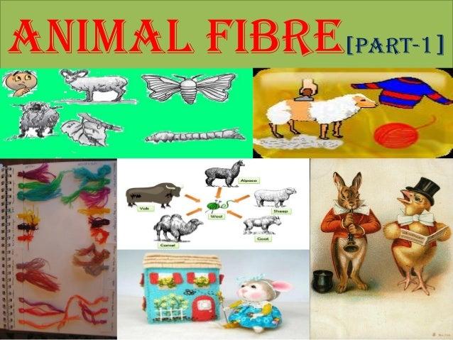 ANIMAL FIBRE[Part-1]