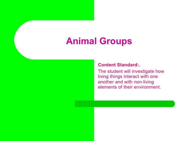 Animal Groups Content Standard:. The student will investigate how living things interact with one another and with non-liv...