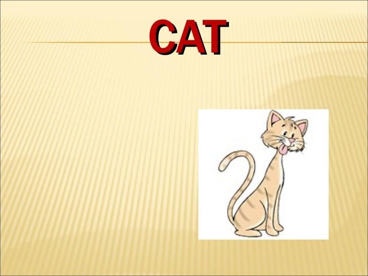 Animal guessing Slide 3