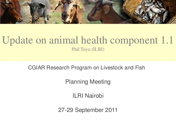 CRP 3.7Update on animal health component 1.1                     Phil Toye (ILRI)   Component 1.1: Animal Health     CGIAR...
