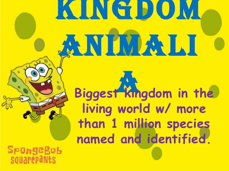 KingdomAnimAli        A in the Biggest kingdom   living world w/ more  than 1 million species  named and identified.