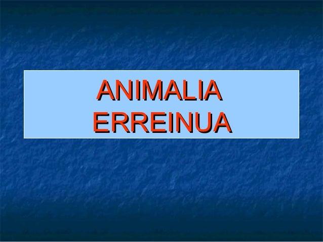 ANIMALIAERREINUA
