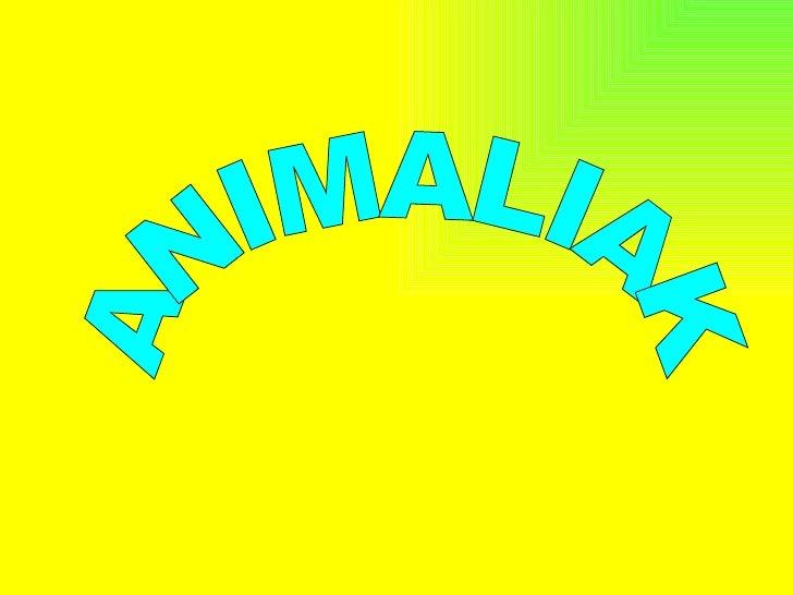 - ANIMALIA ORNODUNAK- ANIMALIA ORNOGABEAK
