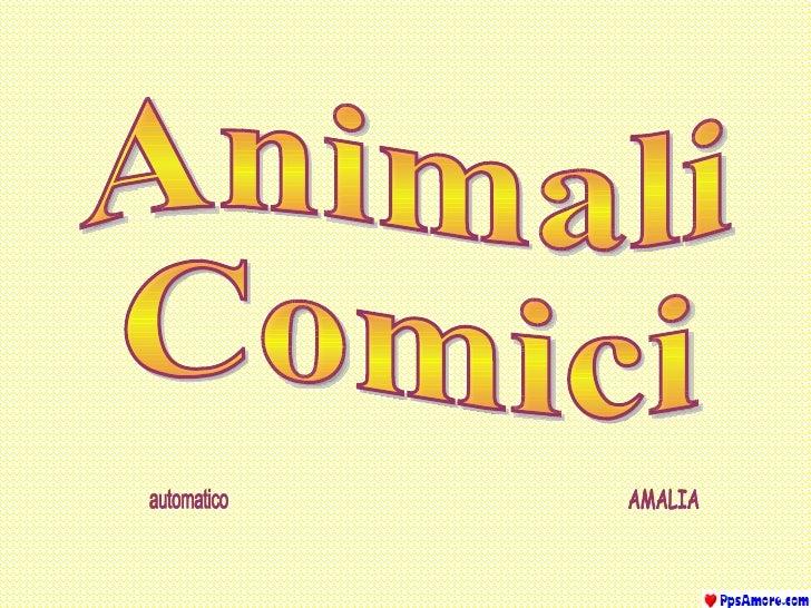 Animali Comici automatico AMALIA