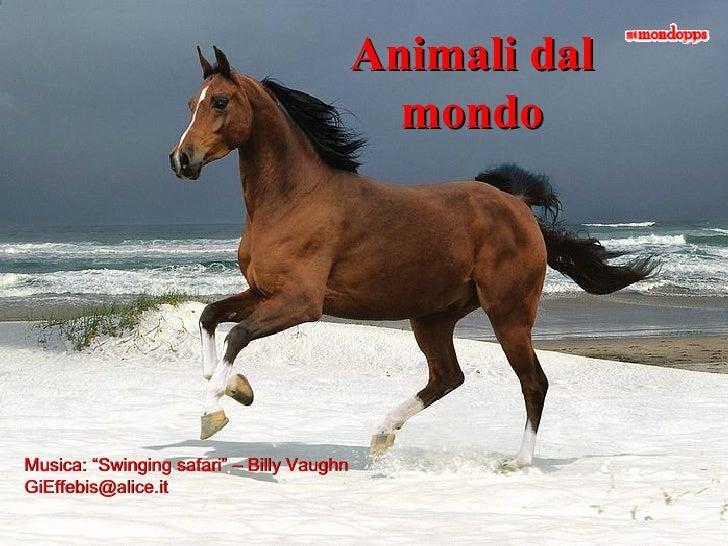 "Animali dal mondo Musica: ""Swinging safari"" – Billy Vaughn [email_address]"