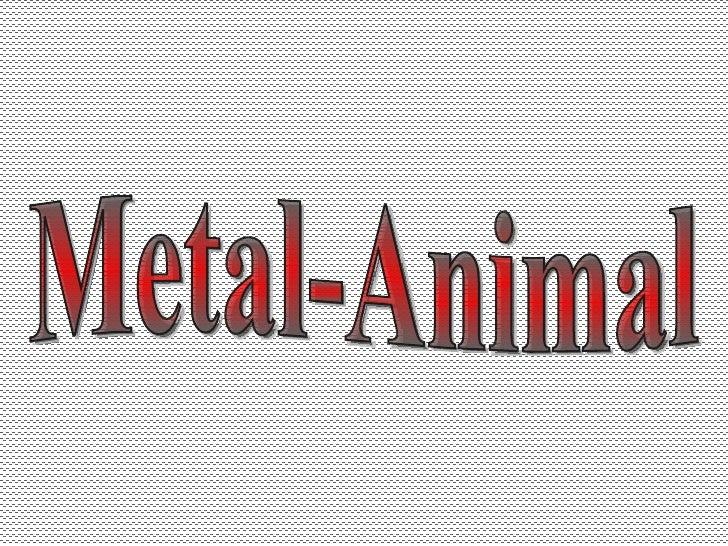 Metal-Animal