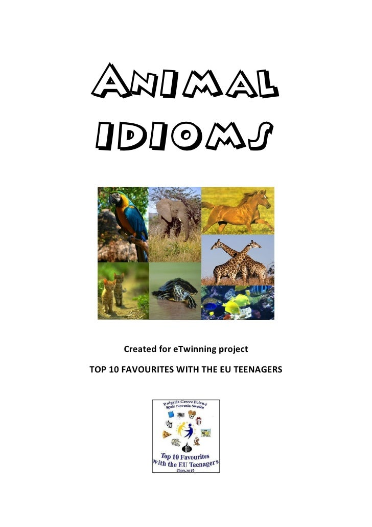 Animal idioms          Created for eTwinning project  TOP 10 FAVOURITES WITH THE EU TEENAGERS