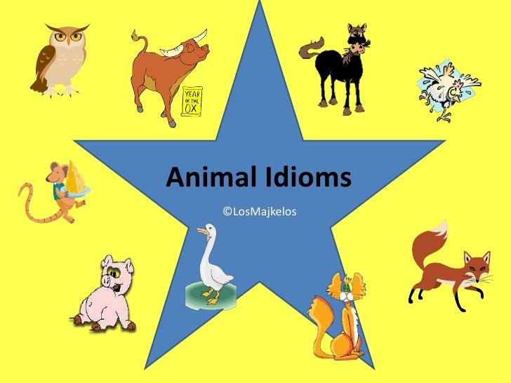 Animal Idioms   ©LosMajkelos