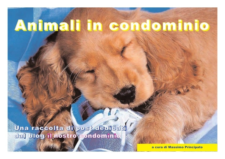 Animali in condominio     Un a r a cco lt a di po s t d ed icat i d a l b l o g il nos t r o c ondom inio                 ...