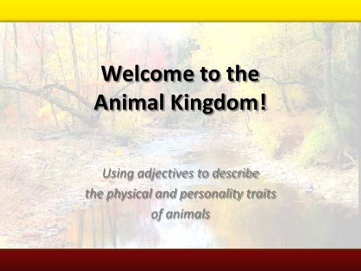 Welcome to the Animal Kingdom!<br />Using adjectives to describe <br />the physical and personality traits <br />of animal...