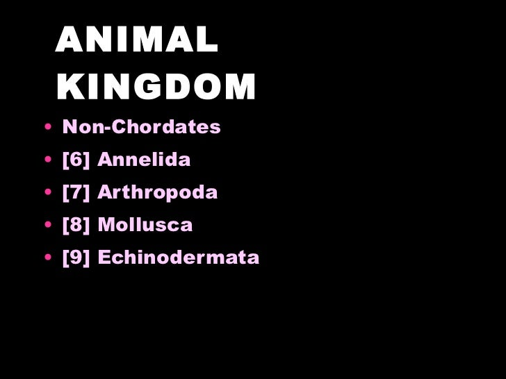 classification of non chordates Animal diversity: (non-chordates) phylum: phylum nematoda classification i the body wall is covered by thick tough non-chitinous cuticle resistant to the.