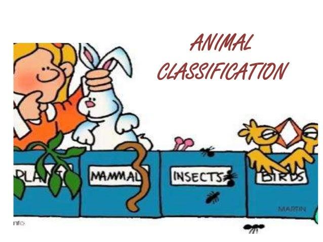 ANIMALCLASSIFICATION