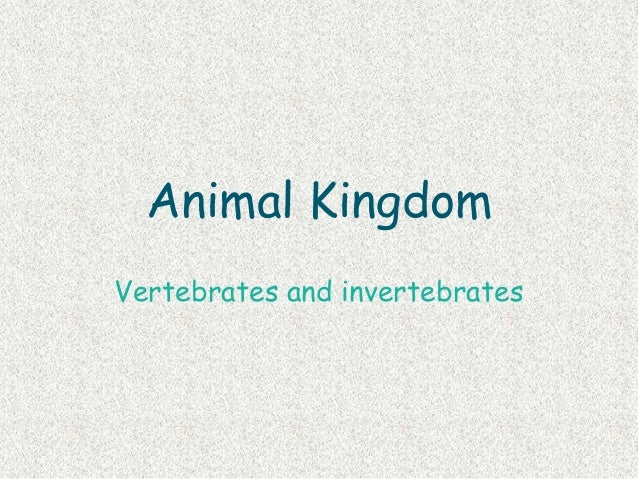 Animal KingdomVertebrates and invertebrates