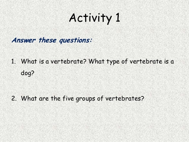 essay questions on vertebrates The tools you need to write a quality essay or essays related to biology lab report - invertebrates 1 the only question is, which piece of infrastructure.