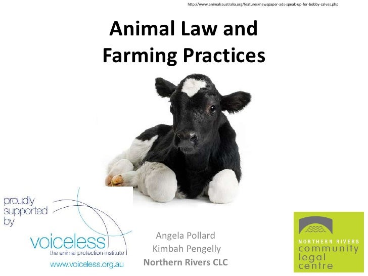 http://www.animalsaustralia.org/features/newspaper-ads-speak-up-for-bobby-calves.php Animal Law andFarming Practices      ...