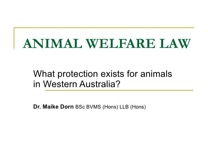 ANIMAL WELFARE LAW What protection exists for animals in Western Australia? Dr. Maike Dorn  BSc BVMS (Hons) LLB (Hons)