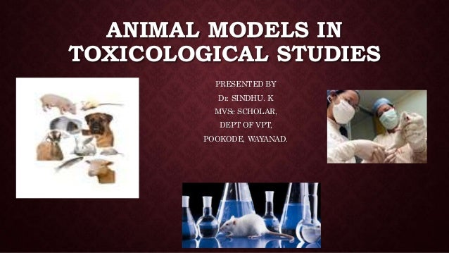 ANIMAL MODELS IN TOXICOLOGICAL STUDIES PRESENTED BY Dr. SINDHU. K MVSc SCHOLAR, DEPT OF VPT, POOKODE, WAYANAD.