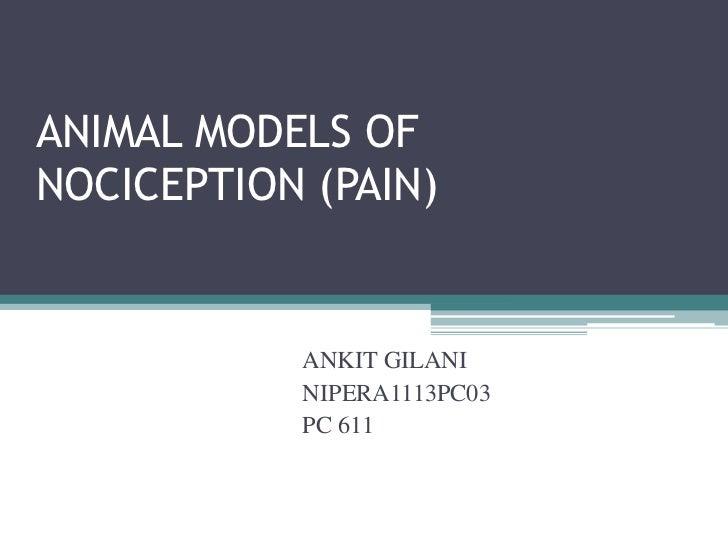 ANIMAL MODELS OFNOCICEPTION (PAIN)           ANKIT GILANI           NIPERA1113PC03           PC 611