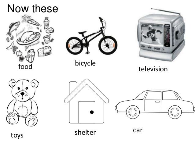 Animal needs (teach 1st, 2nd, 3th grades)