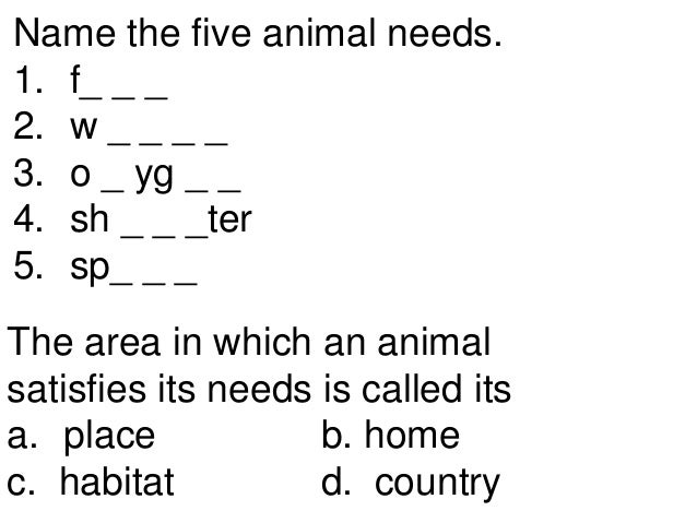 Basic Needs Of Animals Worksheets : Animal needs teach st nd th grades