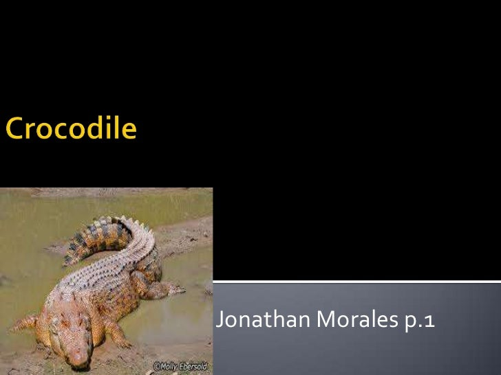 Jonathan Morales p.1