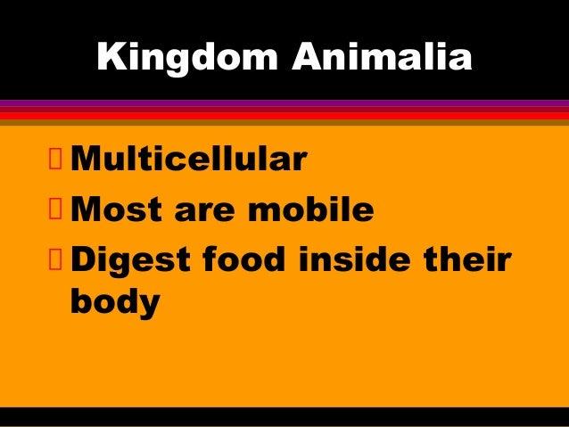 Kingdom AnimaliaMulticellularMost are mobileDigest food inside theirbody