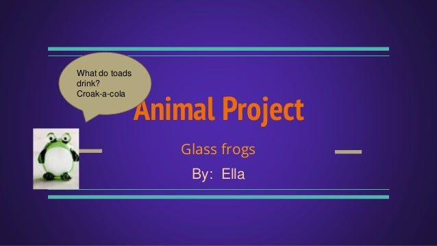 Animal Project Glass frogs By: Ella What do toads drink? Croak-a-cola