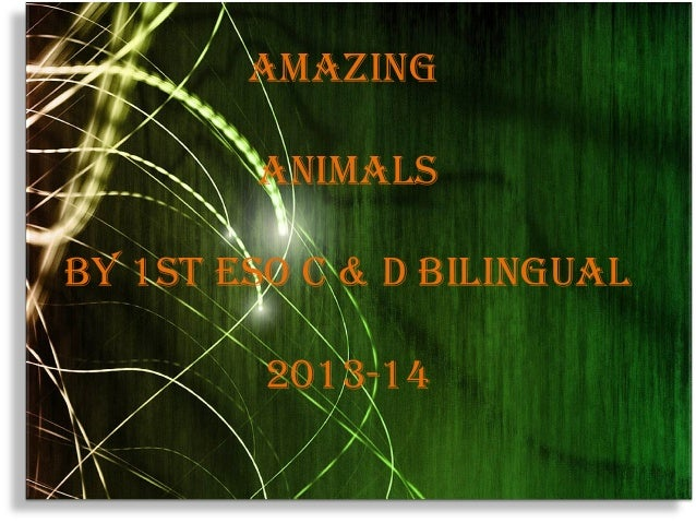 AmAzing AnimAlS By 1St eSo c & d BilinguAl 2013-14
