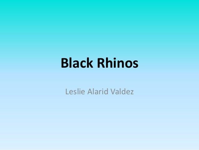 Black Rhinos Leslie Alarid Valdez