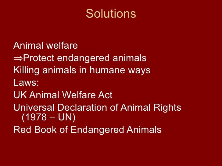 animal rights rational thought Ocrdu makes good points here: a baby is less rational a being than an adult chimpansee apparently, rationality as  animal rights and voluntaryism.
