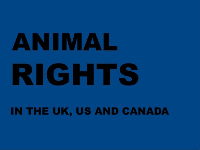 ANIMAL  RIGHTS IN THE UK, US AND CANADA