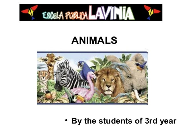 ANIMALS • By the students of 3rd year