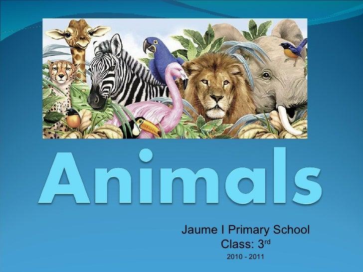 Jaume I Primary School Class: 3 rd 2010 - 2011
