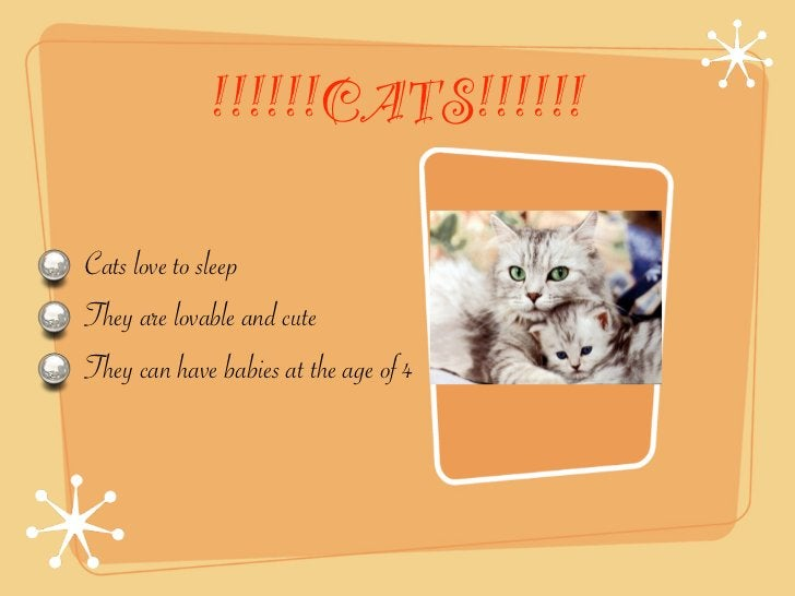 !!!!!!CATS!!!!!!Cats love to sleepThey are lovable and cuteThey can have babies at the age of 4