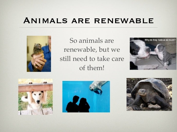How Do We Use Animals As A Natural Resource
