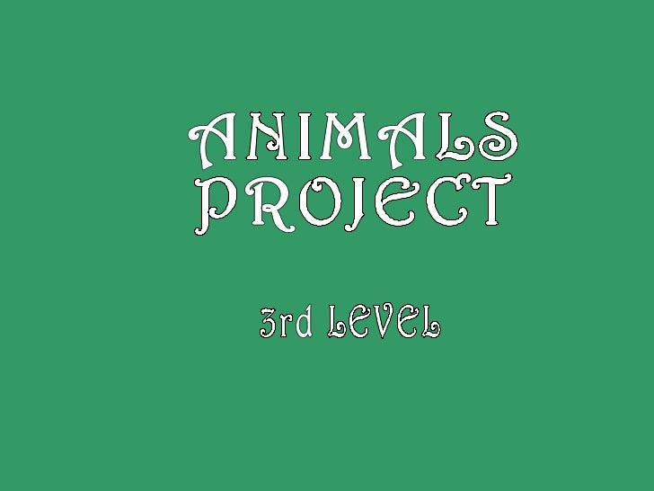ANIMALS PROJECT 3rd LEVEL