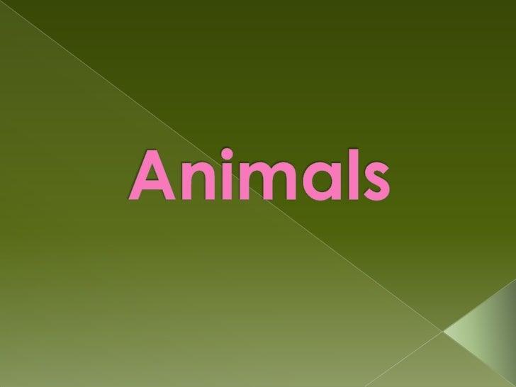 mammals         oviparous          reptiles           birds            fish          insects        amphibians        arth...