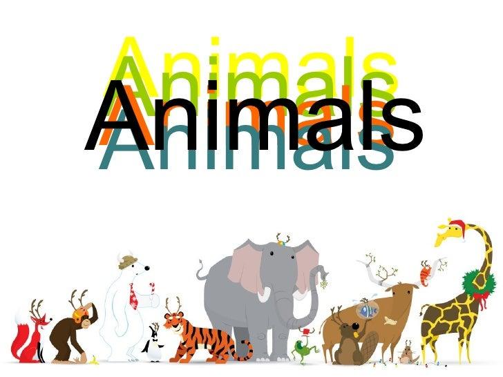 Animals Animals Animals Animals Animals