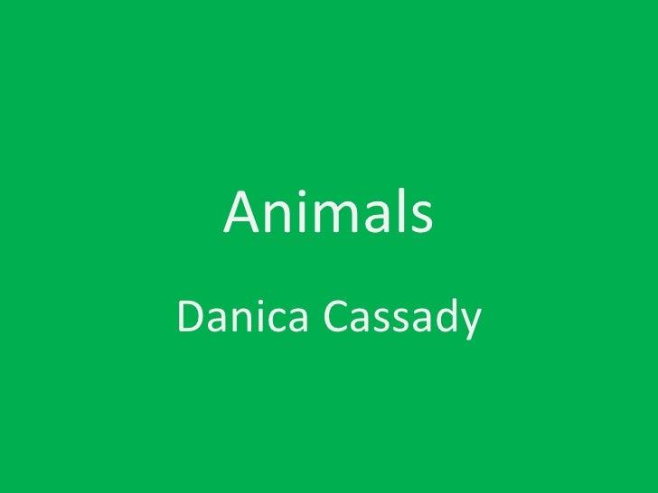 Animals Danica Cassady