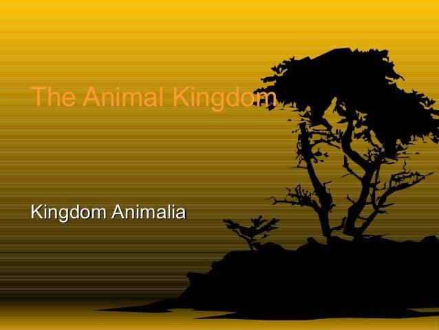 The Animal KingdomKingdom AnimaliaKingdom Animalia