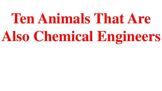 Ten Animals That Are Also Chemical Engineers